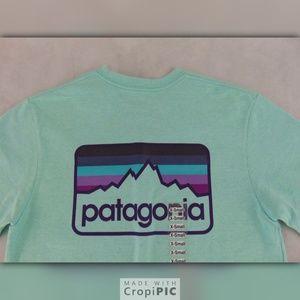 Mens Patagonia Line Logo Badge Responsibili-tee xs